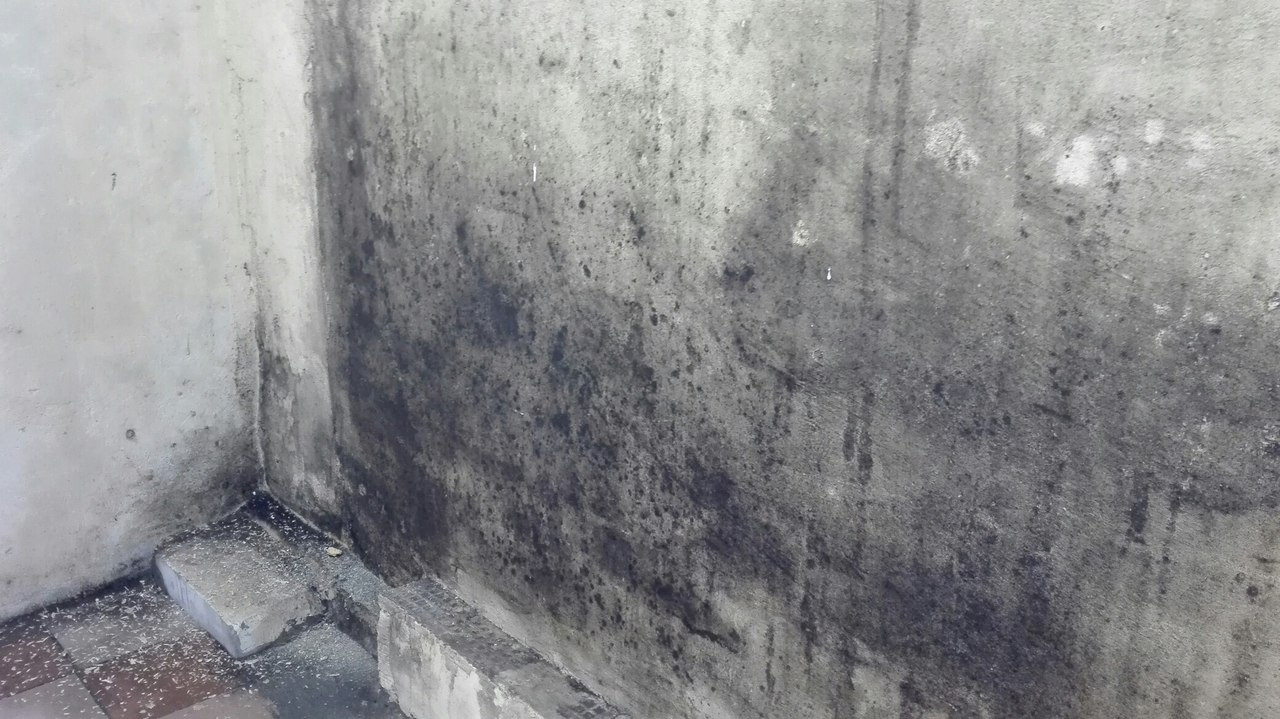 Дали бетон монолитное строительство дома из керамзитобетона